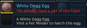Have egg