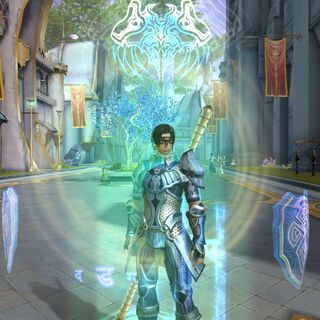 Shield Mantra's activation animation.