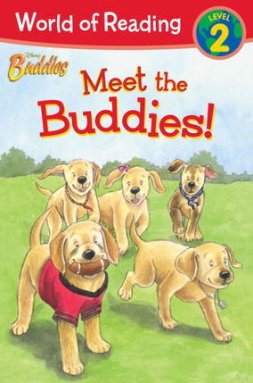Meet the Buddies book cover