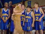 Fernfield Timberwolves (basketball)
