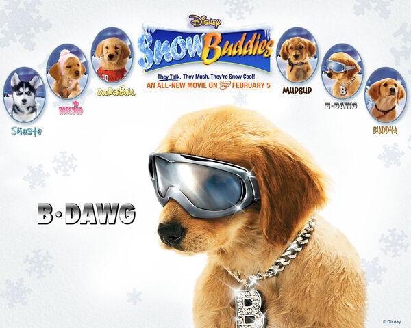 File:Snow buddies bdawg.jpg