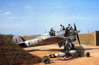 Typhoon rearming