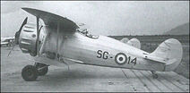 Italian IMAM Ro.41 reconnaissance aircraft