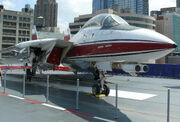 Grumman F-14 Tomcat 2