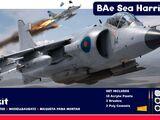 BAe Sea Harrier FRS1 Gift Set (A50010)