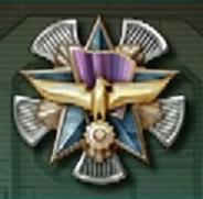 Aircraft Shot Down Medal
