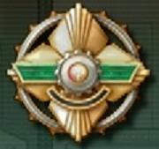 Ground Targets Destroyed Medal