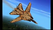 F-14D Enemy AFD 1