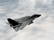 AFD2 F-14G Player (2)