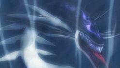 Orca's shadow