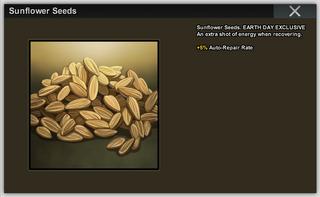 Sunflower Seeds Full