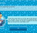 Airborne Cats