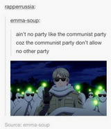 Cause the Communist party don't allow no other party
