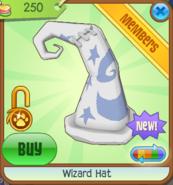 Wizard Hat white