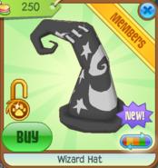 Wizard Hat black