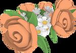 Orangecrowntransparent