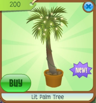 Lit Palm Tree