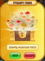Glowing Mushroom Patch