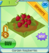 GardenRaspberries