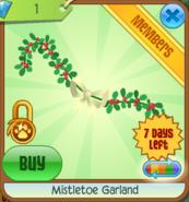 Mistletoeger6m