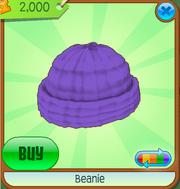 Beanie5