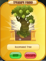 Boomseed Tree