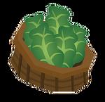 Lettucebaskettransparent