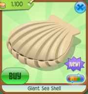 EW Giant Sea Shell tan