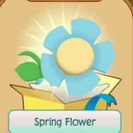 Spring-Flower