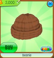 Beanie6