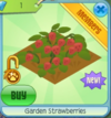 GardenStrawberries