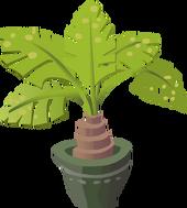 Baby Palm Tree12