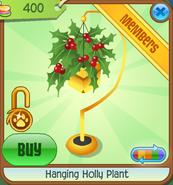 Jamaaliday-Jam Hanging-Holly-Plant Black