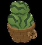 Watermelonbasket