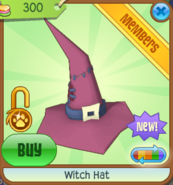 Witch Hat New 6