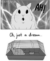 Abandoned-domestic-bunny-rabbit-comics-jenny-jinya-5e8ad68b93a48 7002