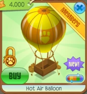 Airballoon6