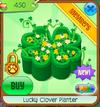 Luckycloverplanter