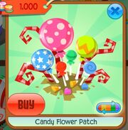 Candy Flower Patch