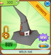 Witch Hat New 1