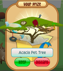 AcaciaPetTree