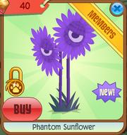 Phantom Sunflower