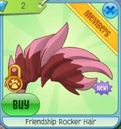 Friendshiprockerhair
