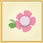 PinkHeadFlower