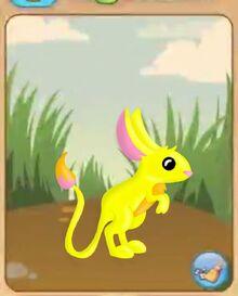 Kangaroo mouse animal jam by little rolling bean-d9rpdz0