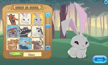 Hare-0