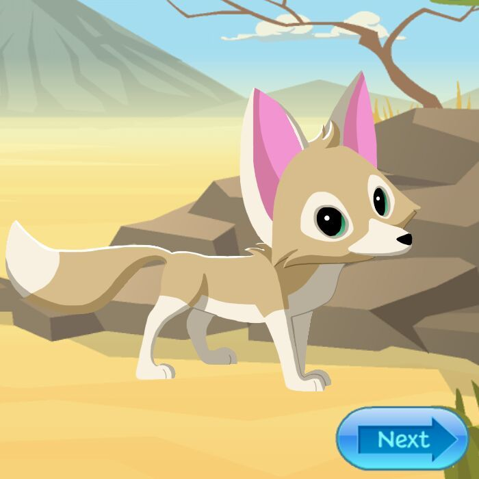 Fennec fox animal jam fanon wiki fandom powered by wikia - Animaljam wiki ...