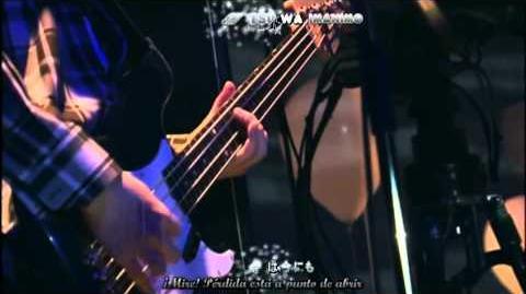 Kn-F Asian Kung-fu Generation-Mustang sub español .mp4