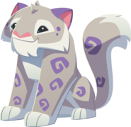 Image of: Arctic Wolf Graphics Play Wild Wiki Fandom Snow Leopard Play Wild Wiki Fandom Powered By Wikia