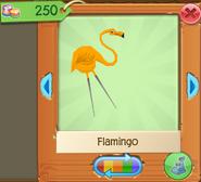 Flamingo 6